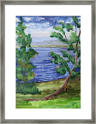 Leaning Tree By Lake Sacandaga Framed Print by Bethany Lee