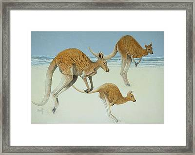 Leaping Ahead Framed Print by Pat Scott