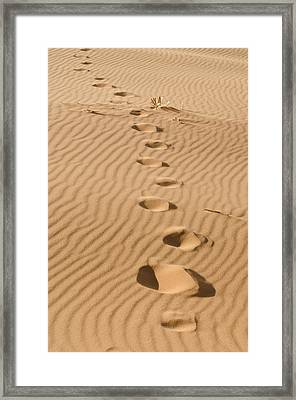 Leave Only Footprints Framed Print by Heather Applegate