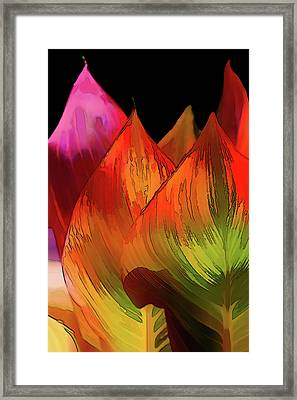 Leaves Aflame Framed Print by Terry Davis