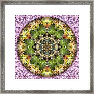 Leaves Of Glass Framed Print by Becky Titus