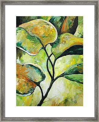 Leaves2 Framed Print by Chris Steinken