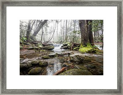 Leconte Treasure Framed Print by Everet Regal