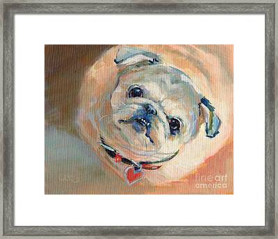 Leeloo's New Collar Framed Print by Kimberly Santini