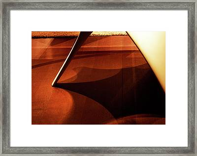 Leg Up Framed Print by Barbara  White
