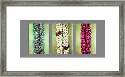 Lei Trio Framed Print by Jade Moon
