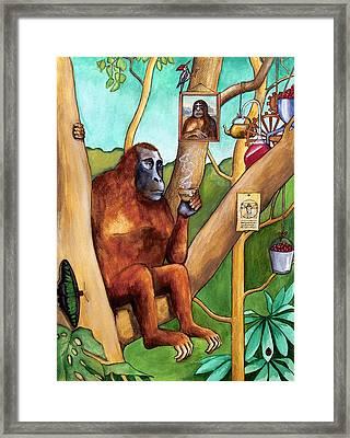 Leonardo The Orangutan Framed Print by Robert Lacy