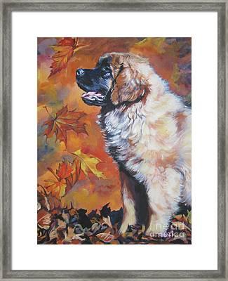 Leonberger Puppy In Autumn Framed Print by Lee Ann Shepard