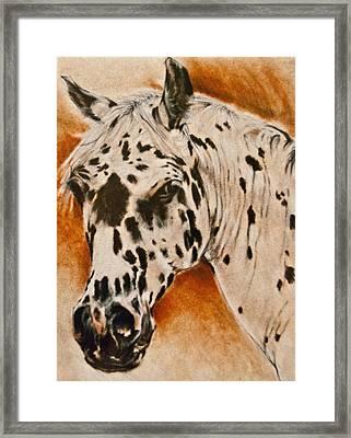 Leopard Appy Framed Print by Jani Freimann