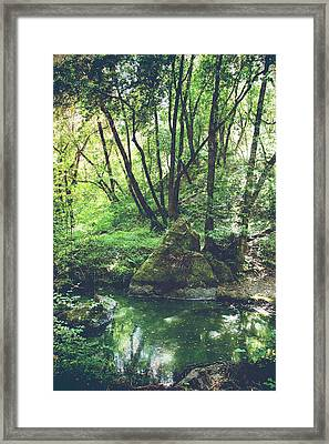 Let It Go Framed Print by Laurie Search