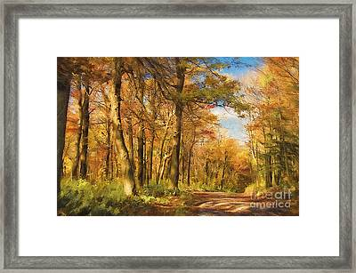 Let's Go For A Walk Framed Print by Lois Bryan
