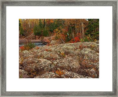 Lichen Temperance Framed Print by James Peterson