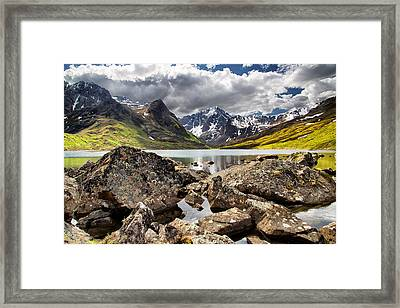 Lichen View Framed Print by Ed Boudreau
