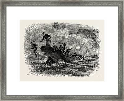 Lieutenant Cushing's Attack On The Albemarle Framed Print by American School