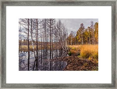 Life And Death Framed Print by Dmytro Korol