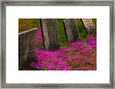 Life And Death Framed Print by Karol Livote