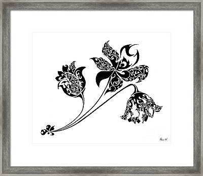 Life Cycle Framed Print by Anushree Santhosh