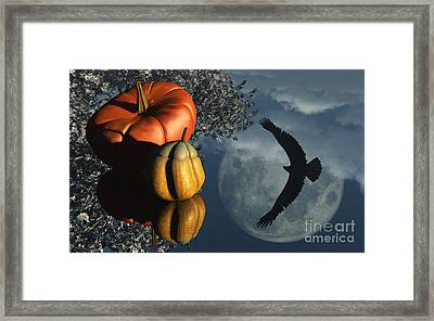 Life's Reflections Framed Print by Richard Rizzo