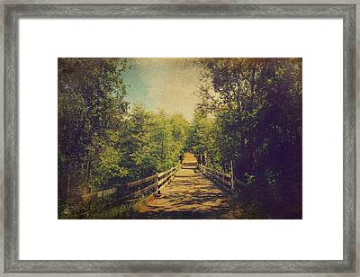 Lifetime Of Memories Framed Print by Laurie Search