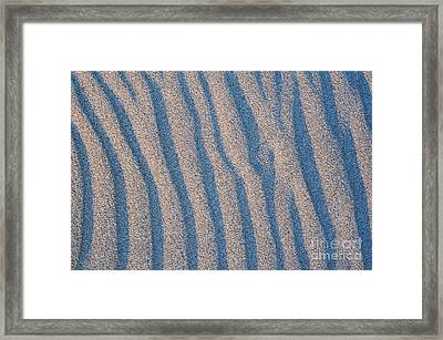 Light And Shade Framed Print by Tim Gainey