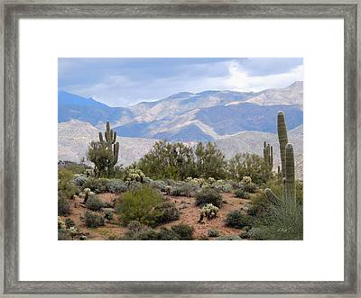 Light And Shadow Framed Print by Gordon Beck