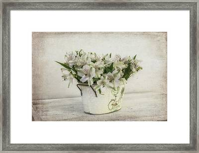 Light Of The Day Framed Print by Kim Hojnacki