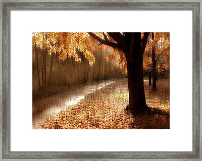 Light Painting Framed Print by Jessica Jenney