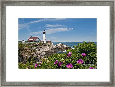 Lighthouse With Rocks On Shore Framed Print by Bill Bachmann and Photo Researchers