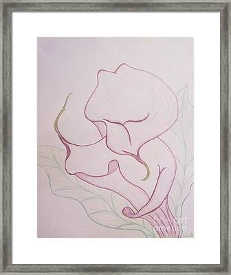 Lilac Calla Lilly Framed Print by Audrey Thompson