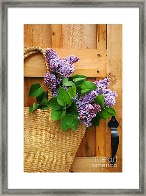 Lilacs In A Straw Purse Framed Print by Sandra Cunningham