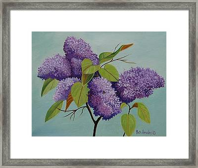 Lilacs Framed Print by Ruth  Housley