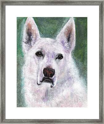 Lily Framed Print by Frances Marino