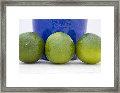 Lime Framed Print by Frank Tschakert