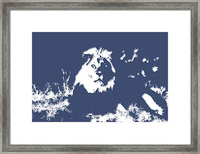 Lion 2 Framed Print by Joe Hamilton