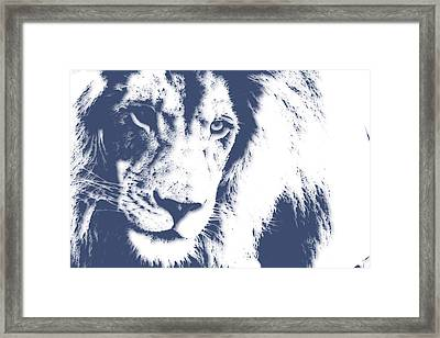Lion 4 Framed Print by Joe Hamilton