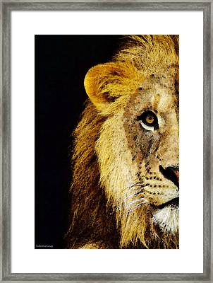 Lion Art - Face Off Framed Print by Sharon Cummings
