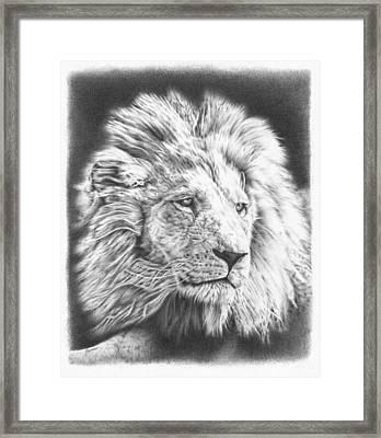 Fluffy Lion Framed Print by Remrov