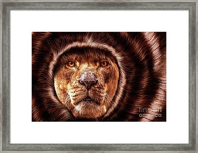 Lion Lady   -2 Framed Print by Prar Kulasekara