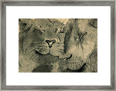 Lions In Love Framed Print by Ramneek Narang