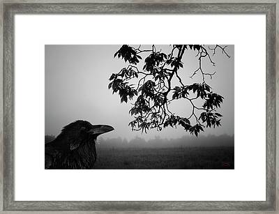 Listening To The Leaves Framed Print by Dave Gordon