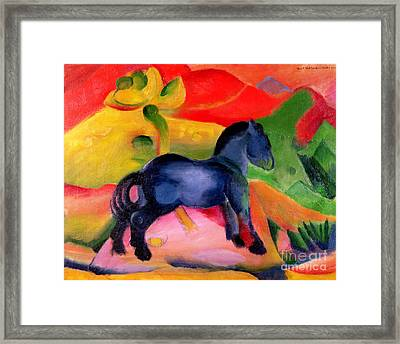 Little Blue Horse Framed Print by Franz Marc