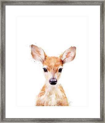 Little Deer Framed Print by Amy Hamilton