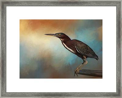 Little Green Framed Print by Kim Hojnacki