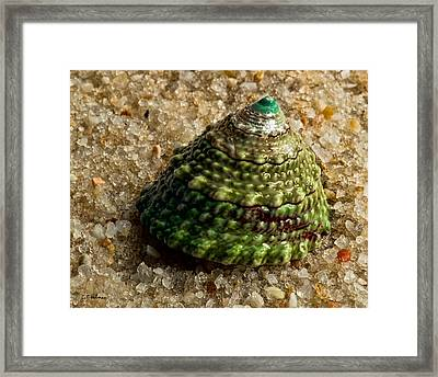Little Green Turret Framed Print by Christopher Holmes