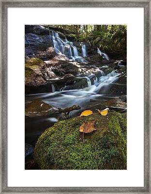 Little High Falls Framed Print by Cale Best