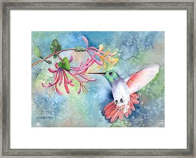 Little Hummingbird Framed Print by Arline Wagner