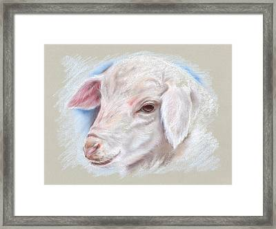 Little Lamb Framed Print by MM Anderson