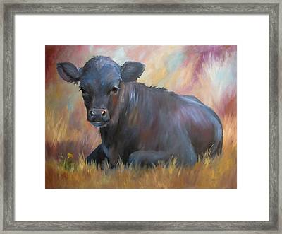 Little Moo  Angus Calf Painting Southwest Art Framed Print by Kim Corpany