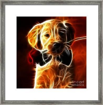 Little Puppy In Love Framed Print by Pamela Johnson