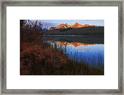 Little Redfish Lake Autumn Morning In Stanley Idaho Framed Print by Vishwanath Bhat